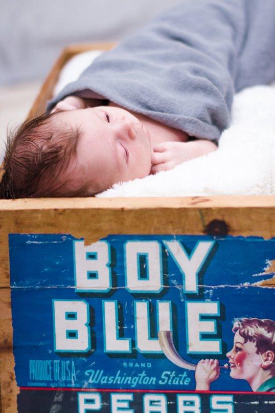 View More: http://ebvisuals.pass.us/nash-newborn